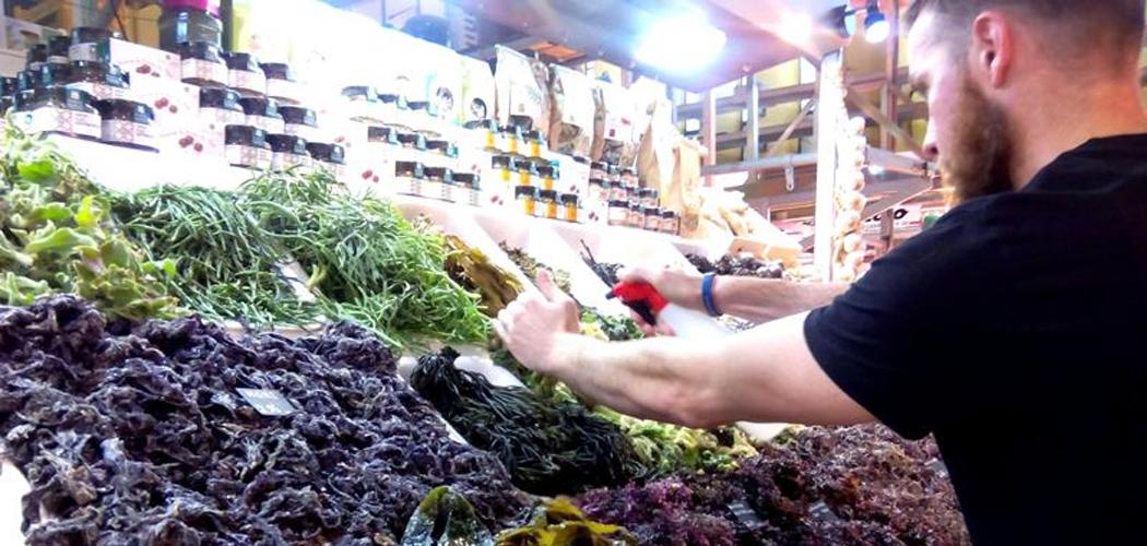 """Javier Morcillo: """"Que las algas sean un producto desconocido lo hace más atractivo"""""""