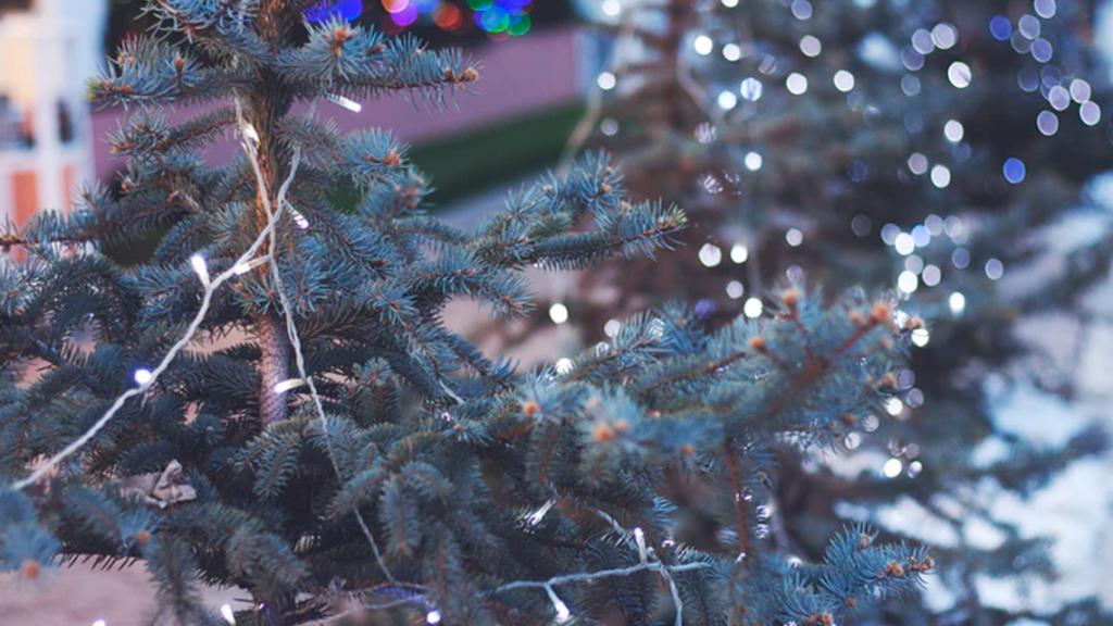 la-nadalenca