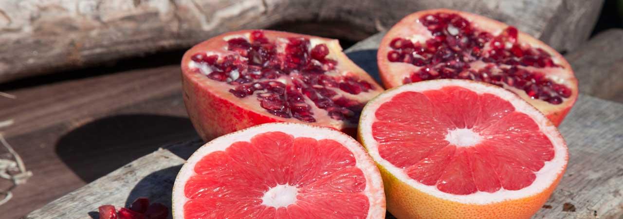 Fruta de invierno